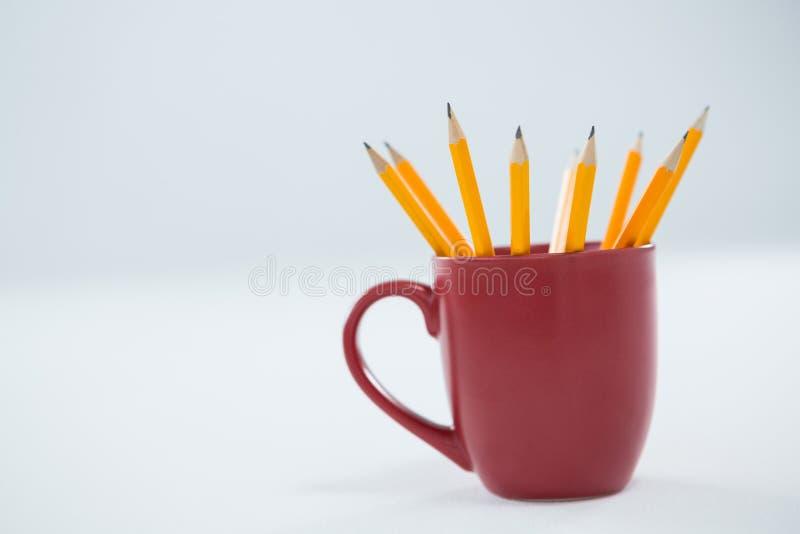 Les crayons jaunes de couleur ont maintenu dans la tasse sur le fond blanc photo libre de droits