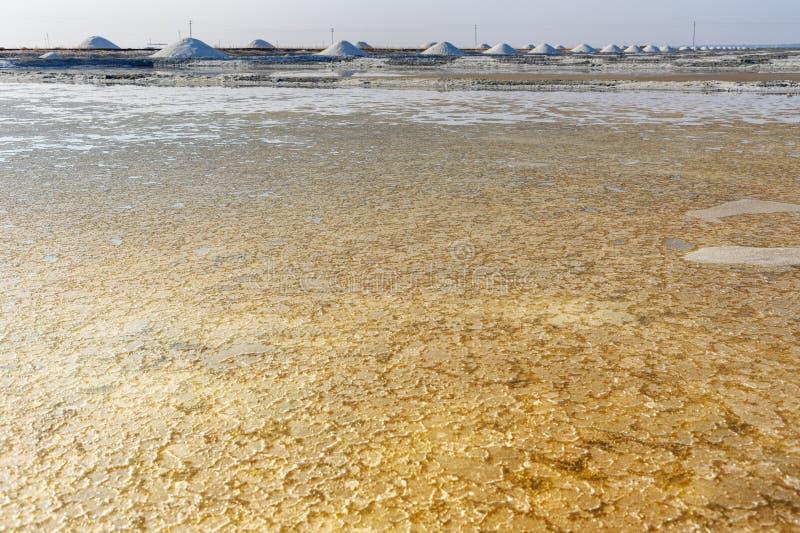 Les cristaux salent sur Sambhar Salt Lake l'Inde photos stock