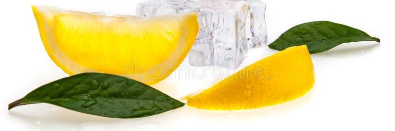 Les cubes de glace froide, deux tranches de citron jaune frais et les feuilles de vert sur le blanc ont isolé le fond photo stock
