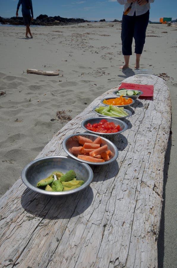 Les cuvettes colorées de légumes ont aligné sur un rondin pour le déjeuner en voyage de kayak à la péninsule de Brookes, île de V images libres de droits