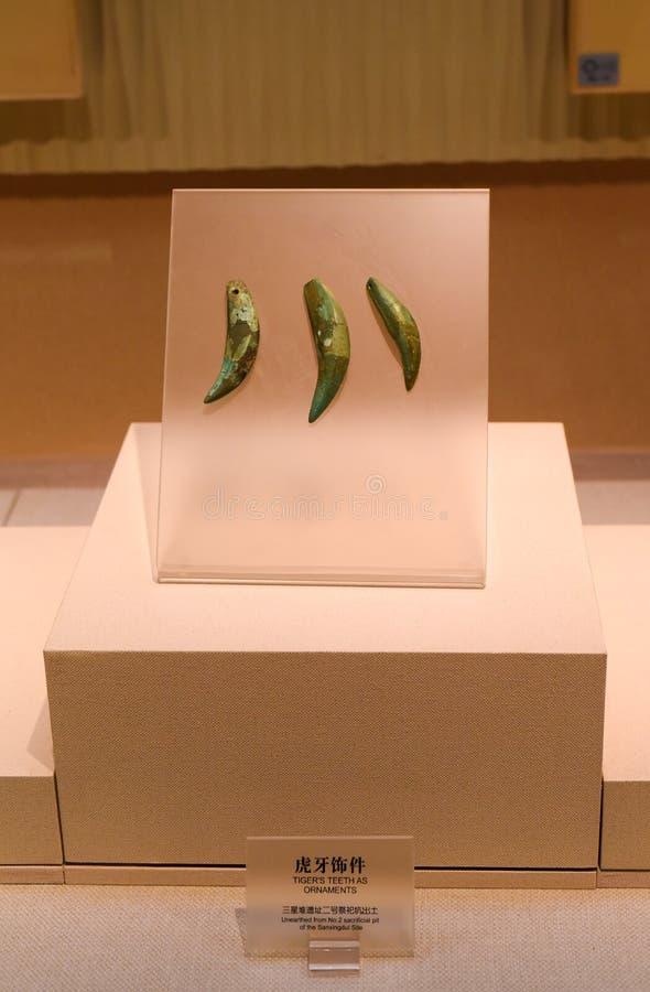 Les dents du tigre comme ornements de musée de Sanxingdui photographie stock