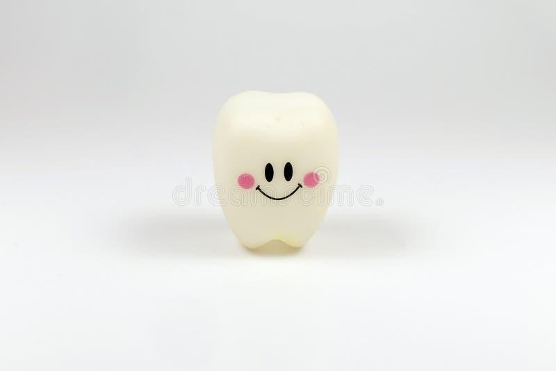 Les dents modèles de jouet sourient photo stock