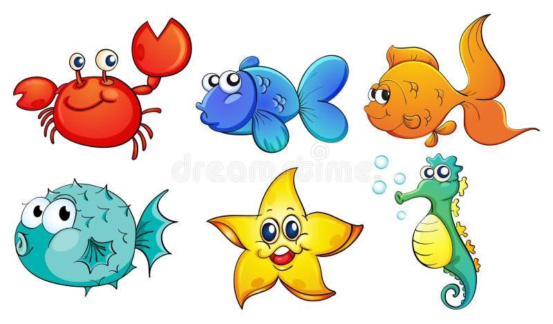 Les différentes créatures de mer illustration libre de droits