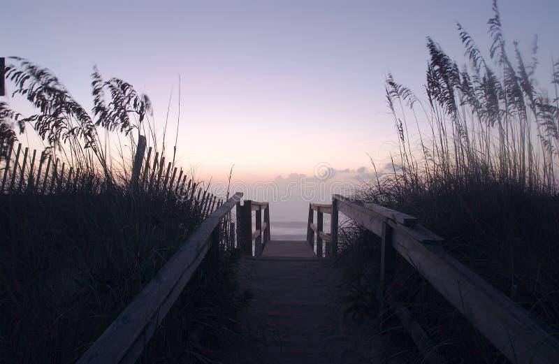 Download Les dunes #1 de rivage image stock. Image du herbe, rivage - 52863
