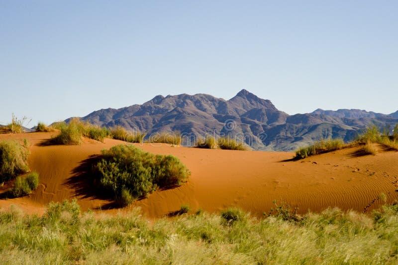 Les dunes oranges avec des montagnes soutiennent dedans, la Namibie, Afrique image libre de droits