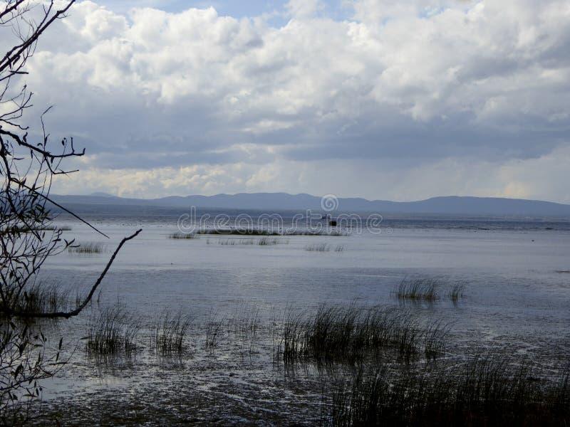Download Les eaux de marais image stock. Image du ondulation, marais - 45359113