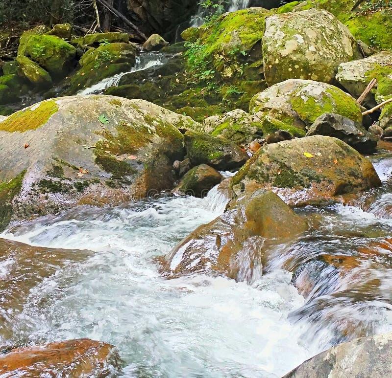 Les eaux de précipitation photographie stock libre de droits