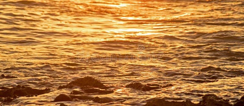 Les eaux des Caraïbe dans la lumière de début de la matinée photographie stock