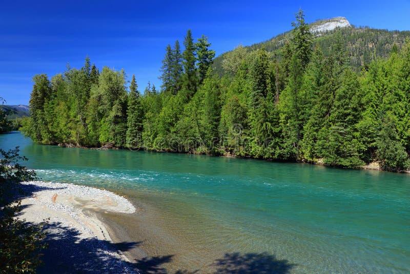 Les eaux glaciaires de turquoise de la rivière de Kootenay chez North End de lac Kootenay entre le Selkirk et les montagnes de Pu photo stock
