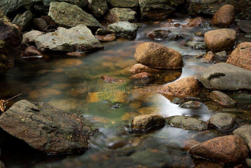 Les eaux molles du parc national d'Acadia image libre de droits