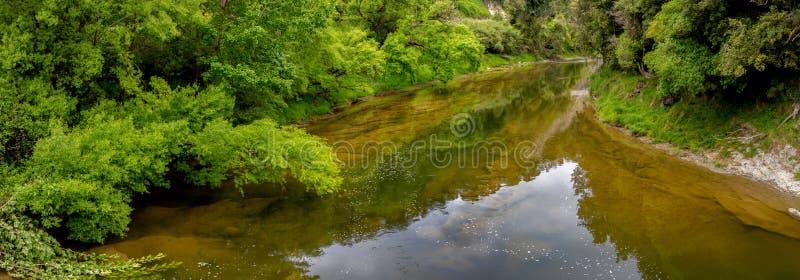 Les eaux toujours d'une rivière avec le feuillage luxuriant sur ses banques images libres de droits