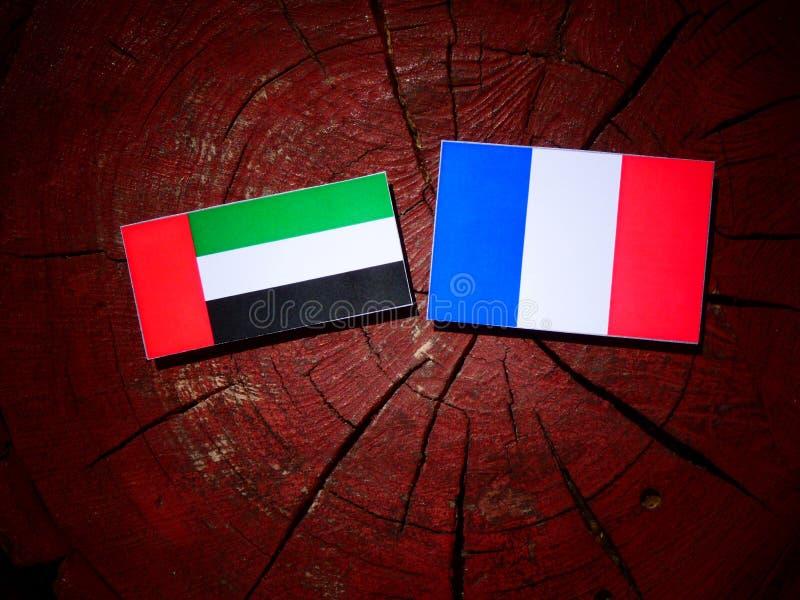 Les Emirats Arabes Unis diminuent avec le drapeau français sur un isola de tronçon d'arbre images libres de droits