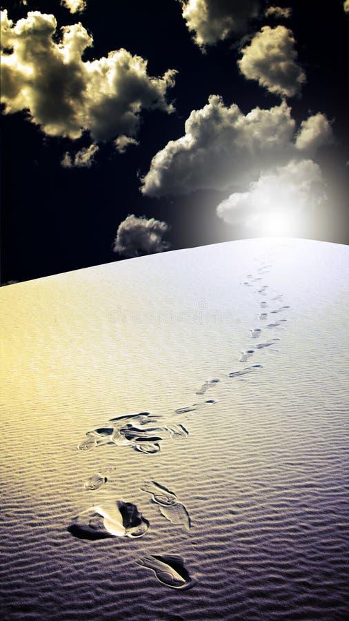 Les empreintes de pas dans le blanc de désert sable le Mexique illustration libre de droits