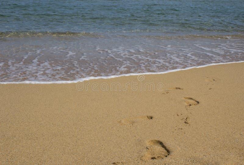 Les empreintes de pas dans le sable sur la mer échouent image stock