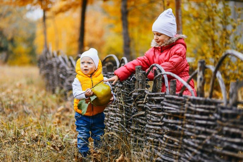 Les enfants dans des vestes colorées marchent en parc d'automne image stock
