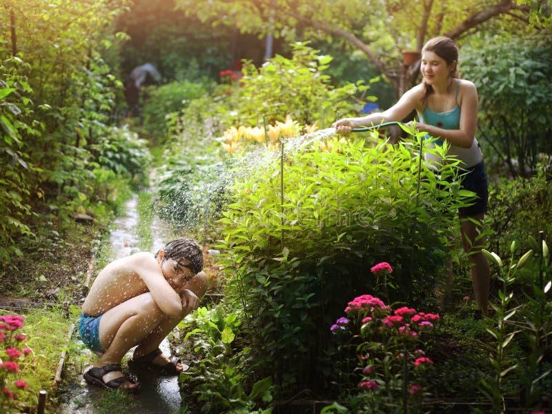 Les enfants de mêmes parents frère et soeur d'adolescent se pulvérisent avec le tuyau de l'eau photographie stock