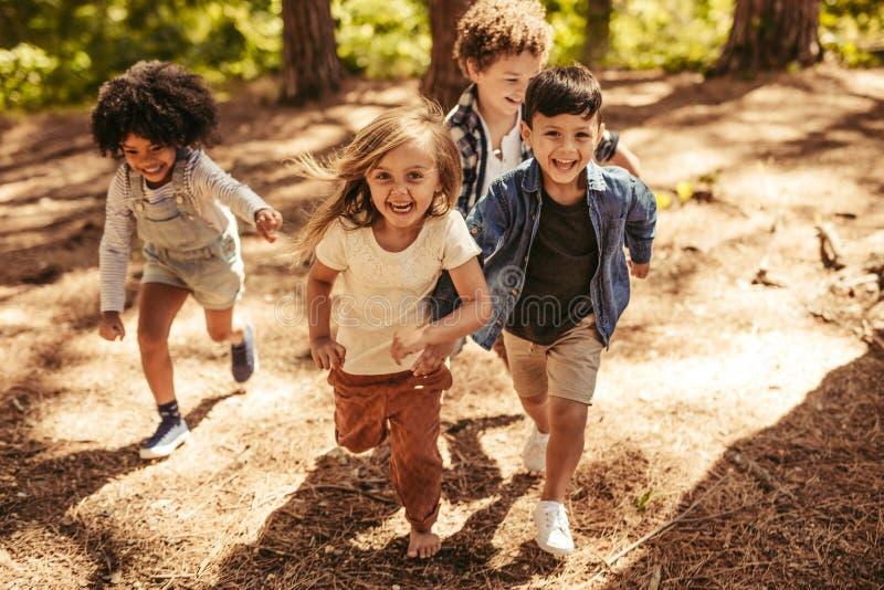 Les enfants emballent dans la forêt photographie stock libre de droits