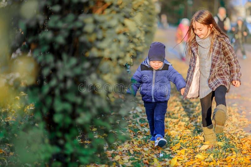 Les enfants marchent sur les feuilles tombées tenant des mains photographie stock