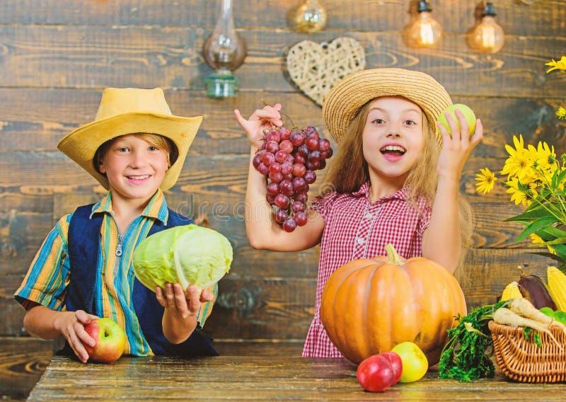 Les enfants s'approchent du fond en bois de l?gumes Id?e de festival de chute d'?cole primaire Le chapeau d'usage de gar?on de fi image libre de droits