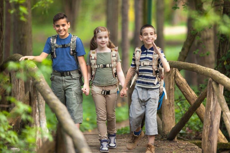Les enfants surveille voyageur avec le sac à dos augmentant le pont dans la forêt images stock