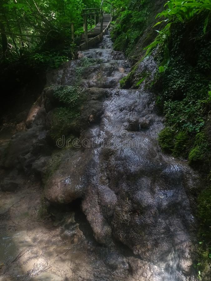 Les environs de Sotchi Trésors de Krasnodar image stock
