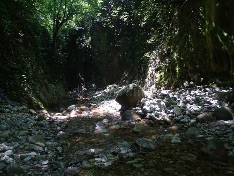 Les environs de Sotchi Trésors de Krasnodar photo stock