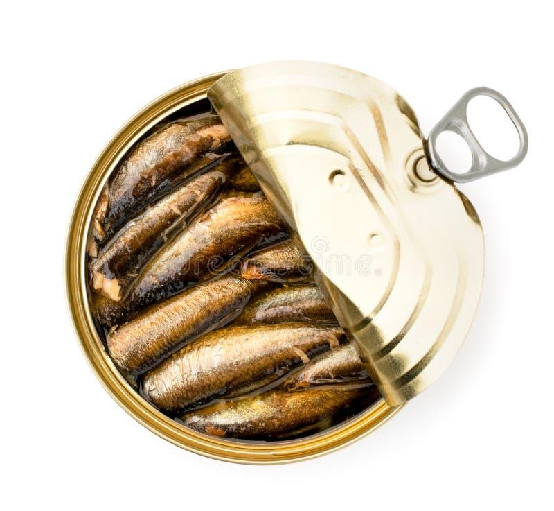 Les esprots pêchent dans un bidon ouvert sur un blanc La forme du dessus photographie stock
