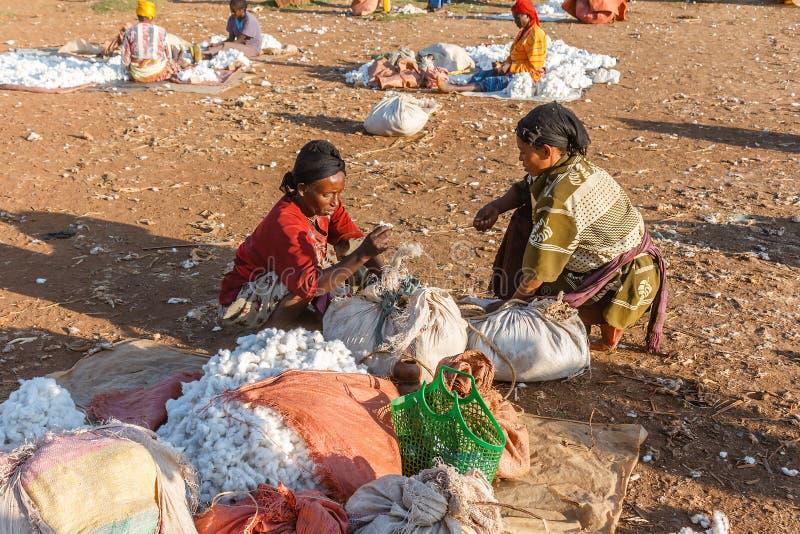 Les femmes éthiopiennes vendent le coton sur le marché local photographie stock libre de droits
