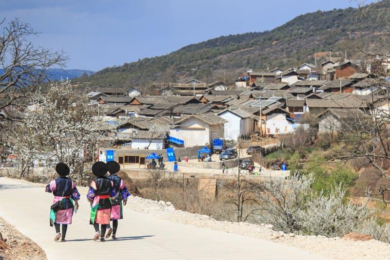 Les femmes de Bai s'habillent avec le vêtement traditionnel marchant vers le village de Qifeng pendant le festival de fleur de po images libres de droits