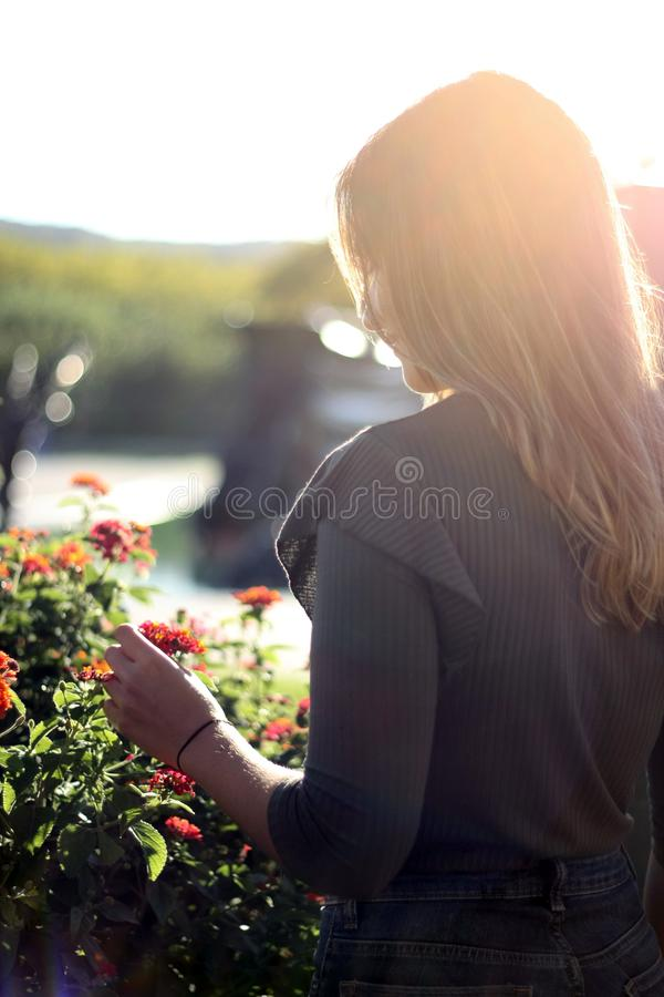 Les femmes de retour ont tiré tenir la fleur avec la lumière de coucher du soleil photo libre de droits
