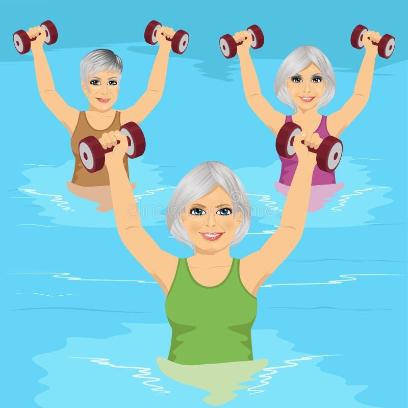 Les femmes supérieures faisant le gymnase d'aqua s'exerce avec des haltères dans la piscine illustration libre de droits