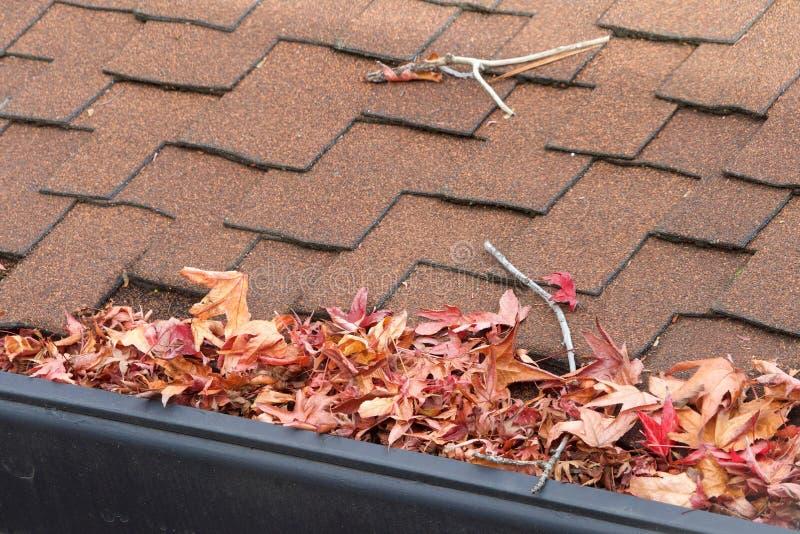 Les feuilles et les bâtons obstruent la gouttière de pluie sur une maison, fin  photo libre de droits