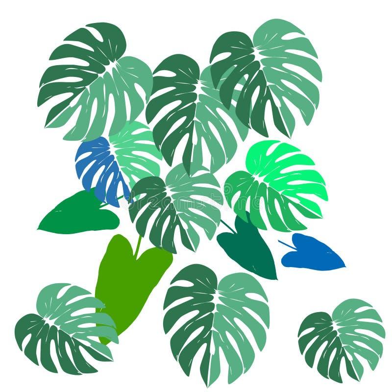Les feuilles et le filodendron de Monstera dirigent la main dessinent l'été exotique réglé avec les feuilles vertes photographie stock