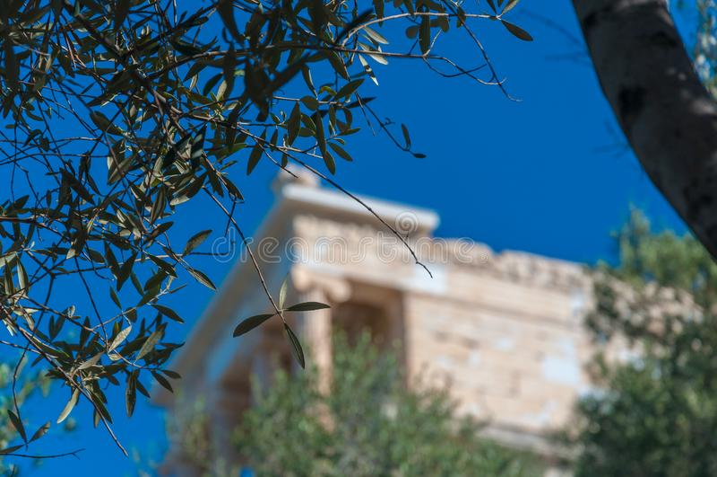 Les feuilles olives avec le temple d'Athena Nike ont brouillé à l'arrière-plan image stock