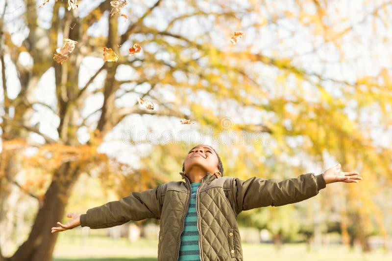 les feuilles se laissent tomber sur un petit garçon avec les bras tendus photographie stock libre de droits