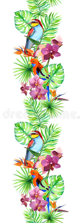 Les feuilles tropicales, oiseau exotique, orchidée fleurit Cadre sans joint Rayure d'aquarelle illustration libre de droits