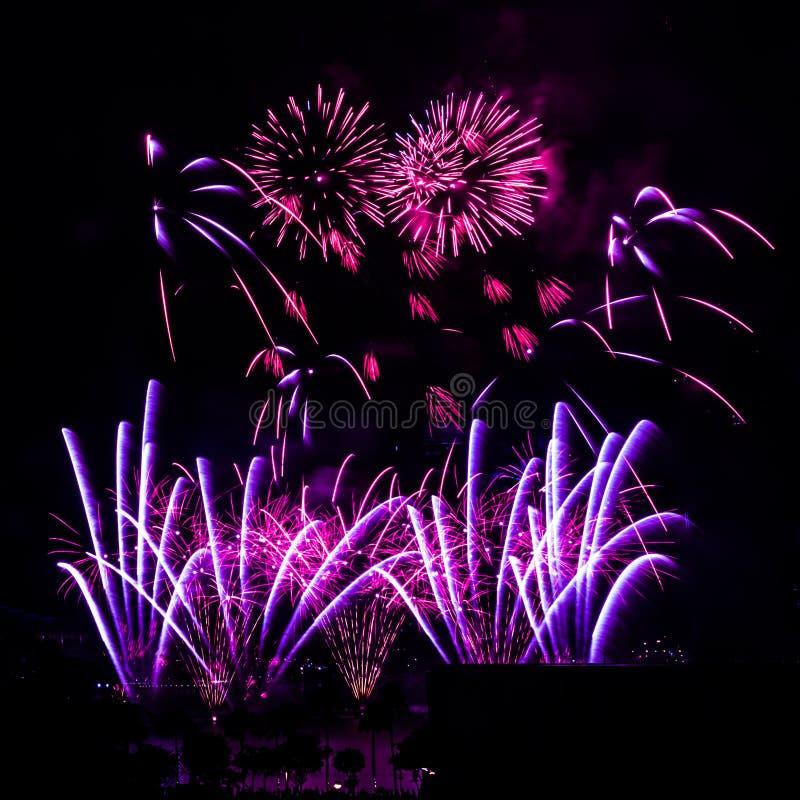 Les feux d'artifice montrent sur un fond foncé de ciel photo libre de droits