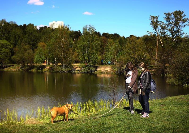 Les filles de l'adolescence avec le chien marchent sur le parc européen de ville avec les arbres et le lac images stock