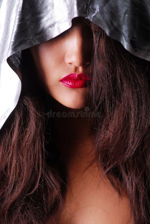 Les filles font face avec les cheveux bruns et les lèvres rouges couverts de manteau argenté d'intérieur images libres de droits