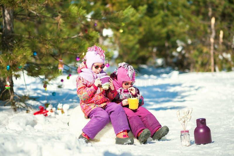 Les filles jumelles dans la forêt tiennent des tasses de cacao en forme de coeur et de guimauves Tasses dans haut étroit tricoté  images libres de droits