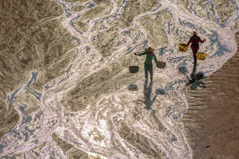 Les fishermans dans la zone intertidale côtière photographie stock