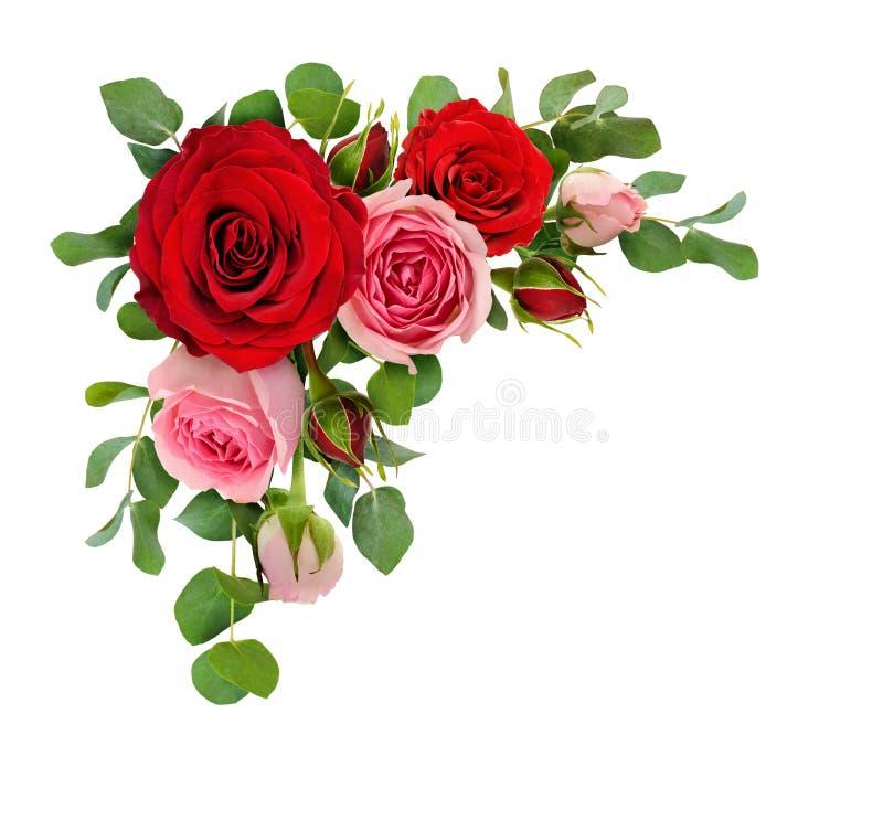Les fleurs de rose de rouge et de rose avec l'eucalyptus part dans un arr faisant le coin photos stock