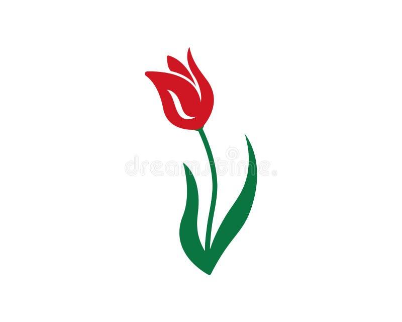 Les fleurs de tulipe de vecteur de beauté conçoivent l'icône de calibre de logo illustration libre de droits