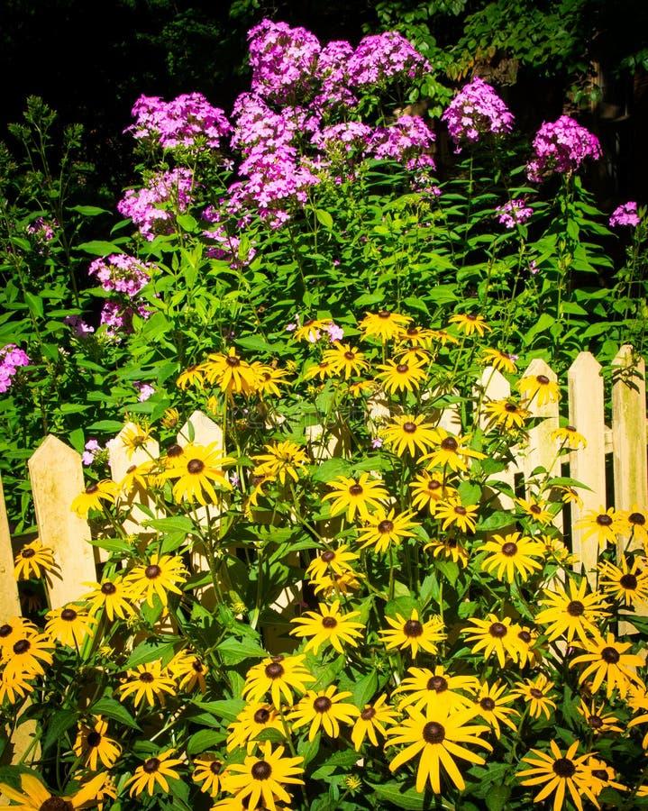 Les fleurs entourent une clôture jaune images libres de droits