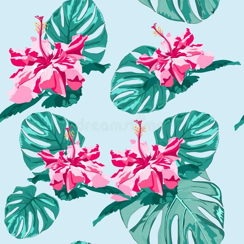Les fleurs graphiques à la mode sans couture de ketmie de dessin de carte blanche de vecteur avec des feuilles de monstera de pal illustration de vecteur