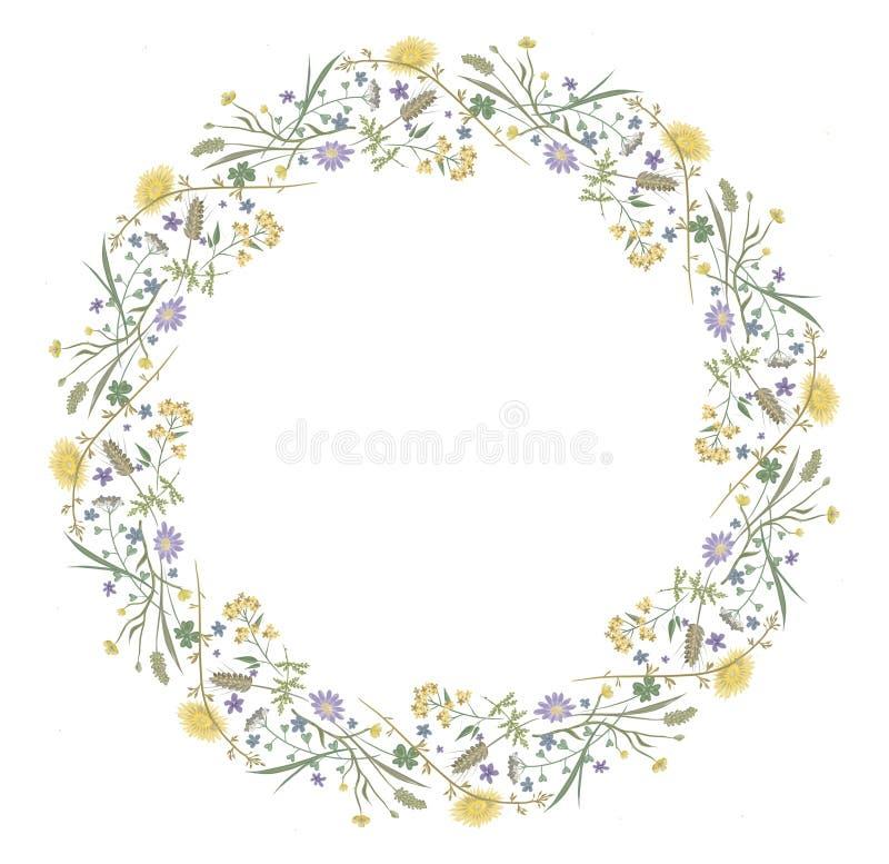 Les fleurs jaillissent nature ronde florale de cadre illustration de vecteur