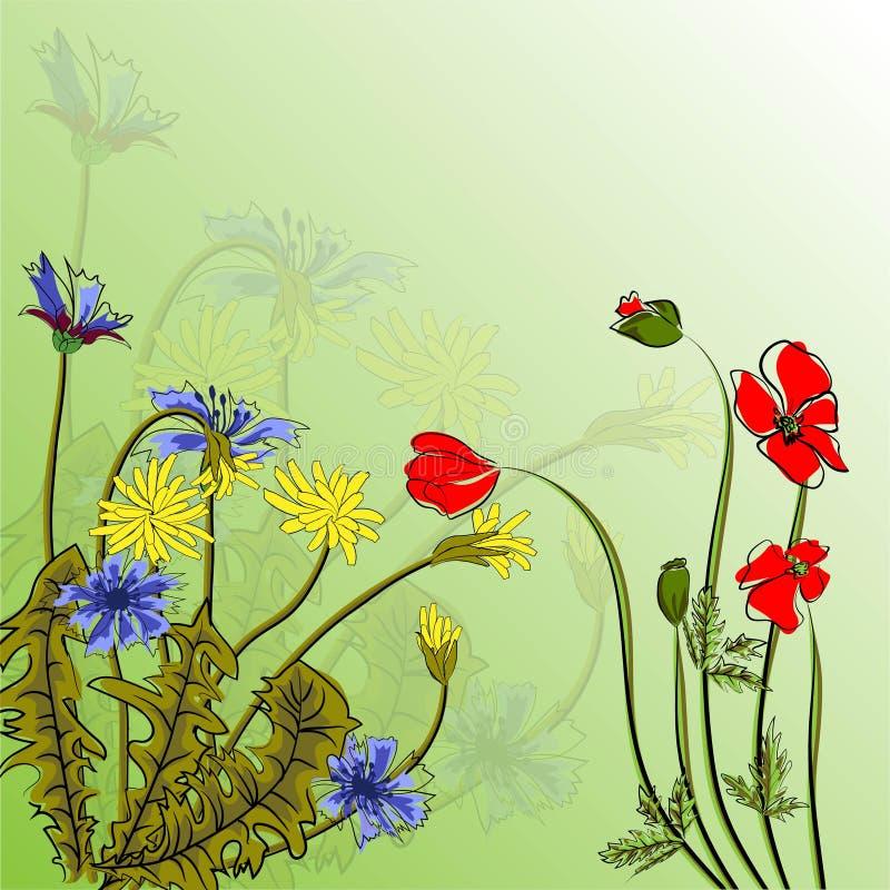 Les fleurs pissenlit, pavots de ressort de bouquet dirigent l'illustration ENV 10 illustration de vecteur