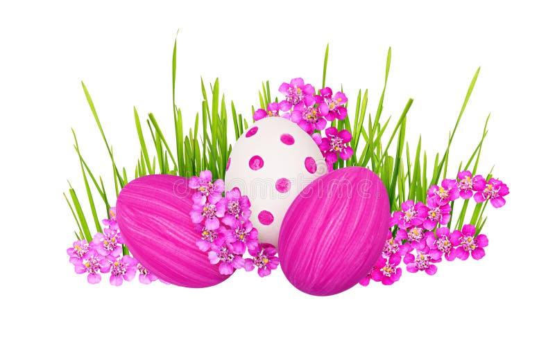 Les fleurs roses et la Pâques de millefeuille ont peint des oeufs avec l'herbe verte illustration libre de droits