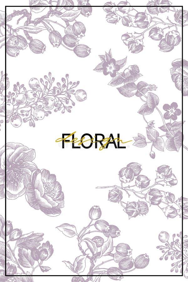 Les fleurs sauvages fleurissent fond de branche Illustration tirée par la main botanique de vintage Conception de vecteur Peut em photo libre de droits
