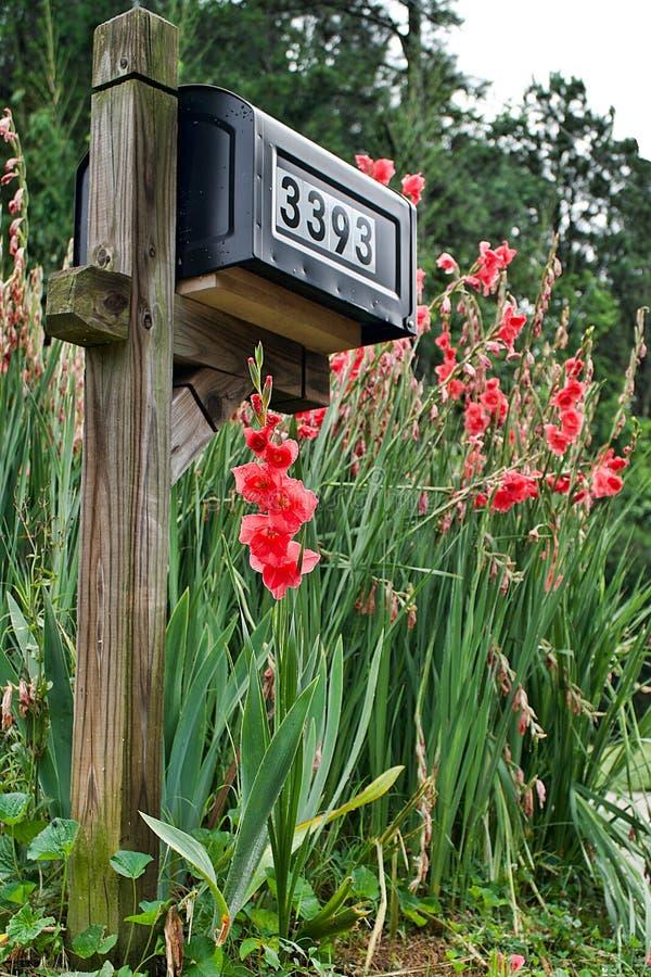 Les fleurs vous saluent quand vous rassemblez le courrier de la boîte aux lettres images stock